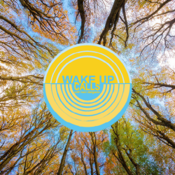 View of tree tops with blue skies and Wake Up Calls logo