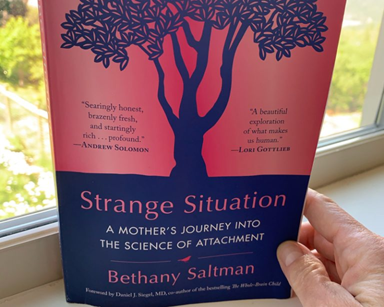 Strange Situation by Bethan Saltman, being held on a white ledge with a window in the background